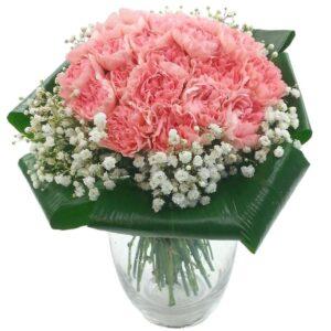 2 Dozen Pink Carnations